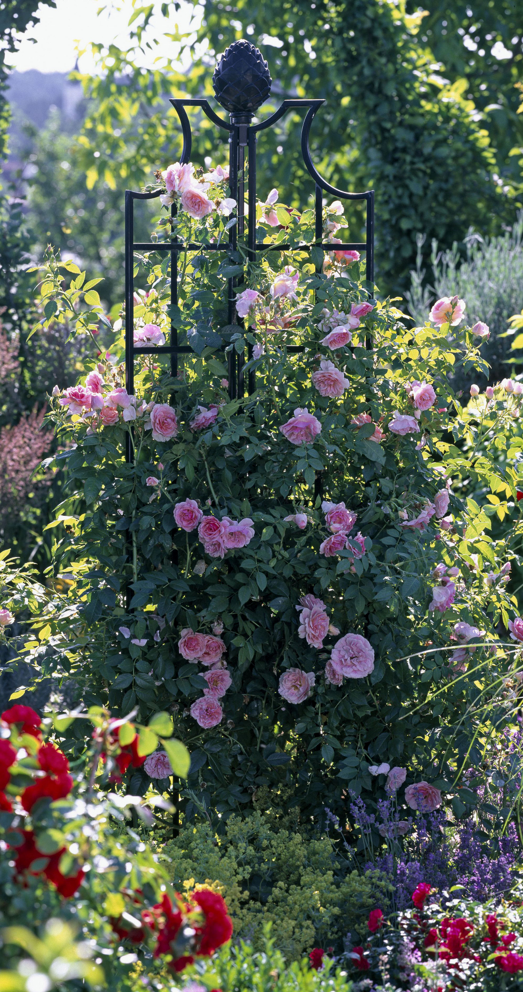 Obelisk Ii Classic Garden Elements Rose Pillar Garden