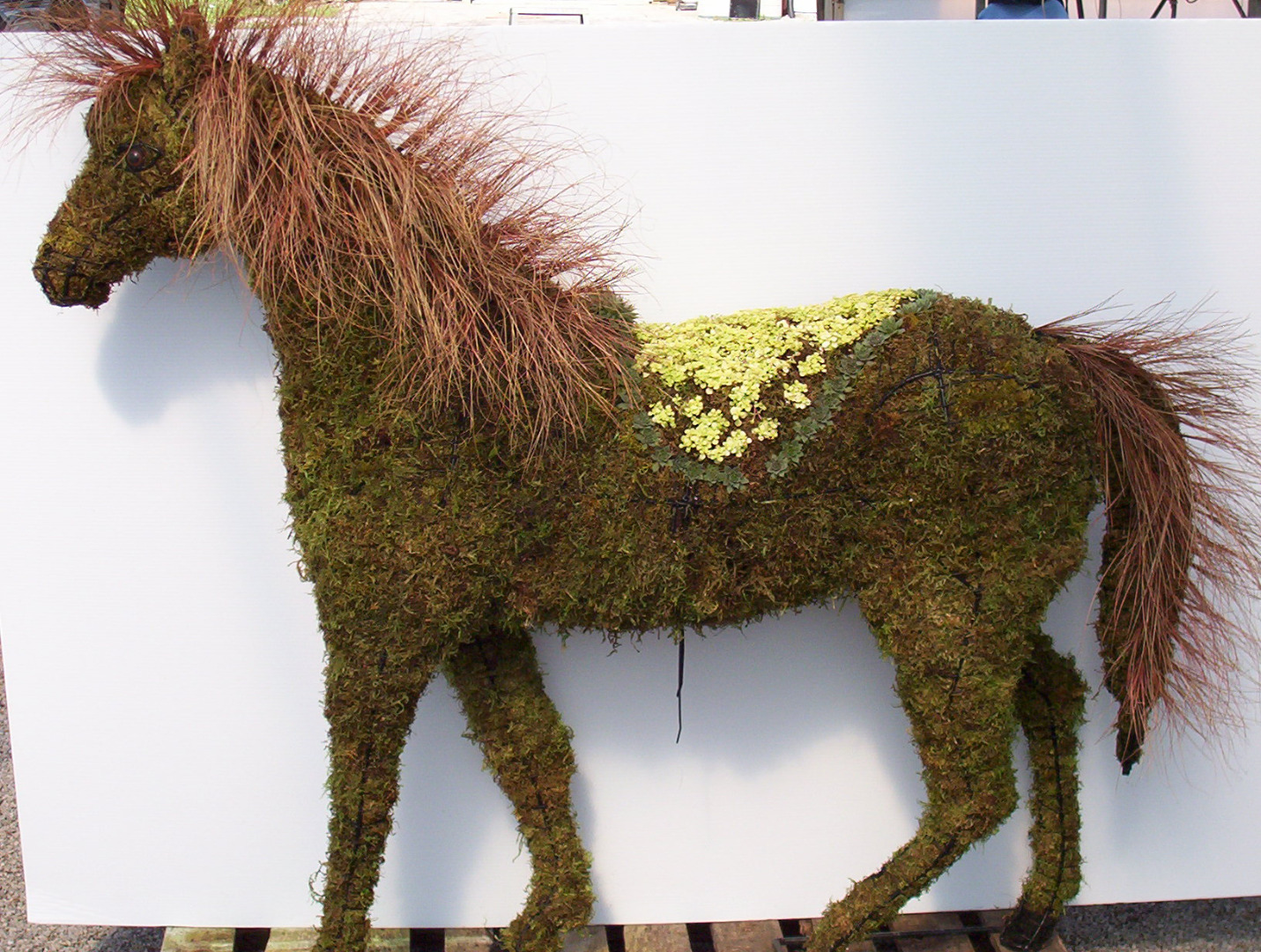 Horse Topiary Frame Only Moss Filled Five Sizes Available Garden Artisans Llc
