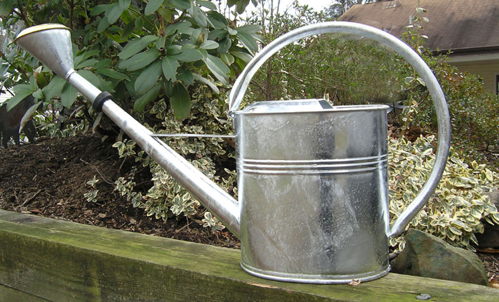 Large galvanized watering can 2 3 gallon garden artisans for Large garden equipment