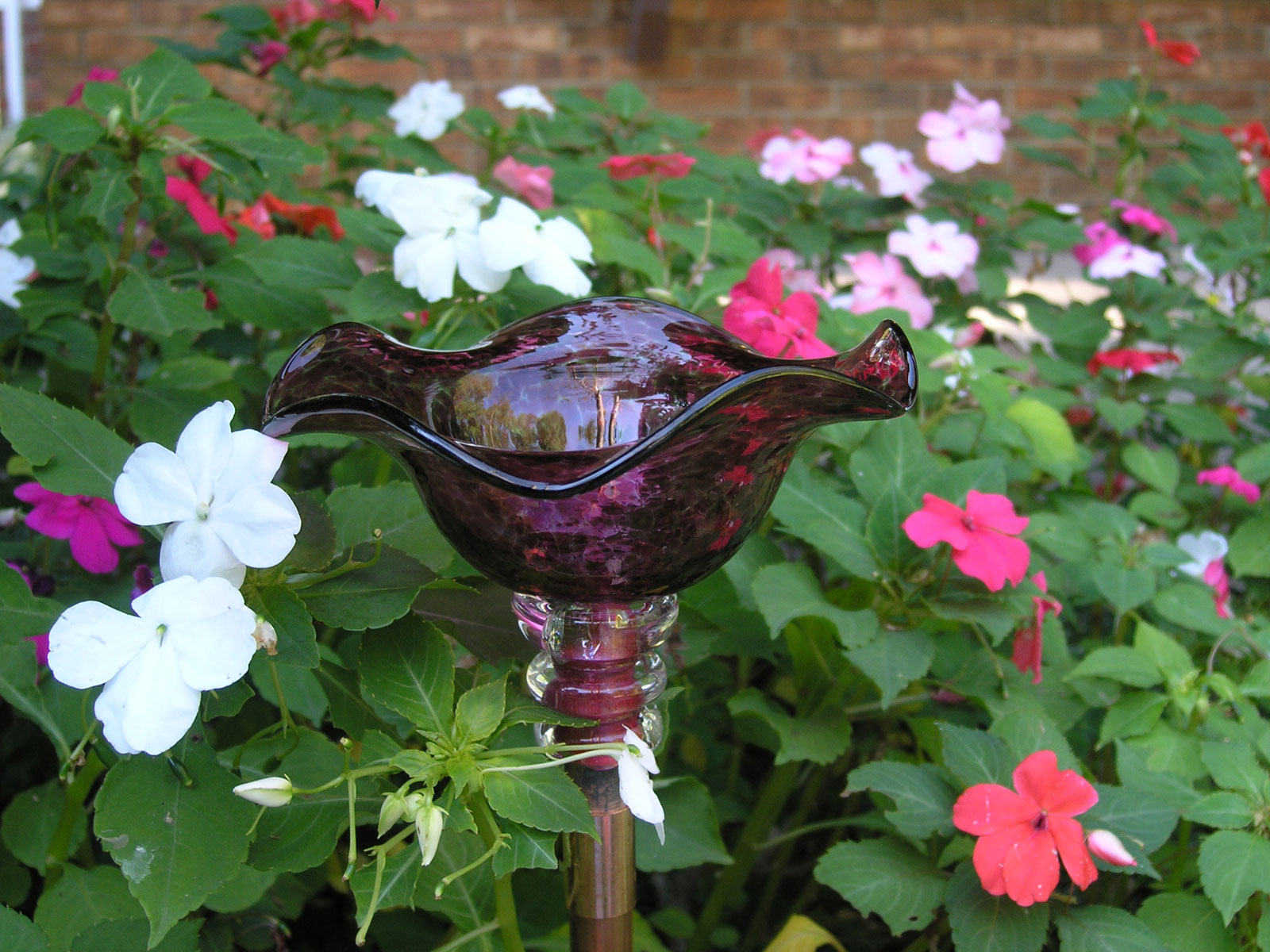 Hand Blown Glass Butterfly Feeder In A Variety Of Colors