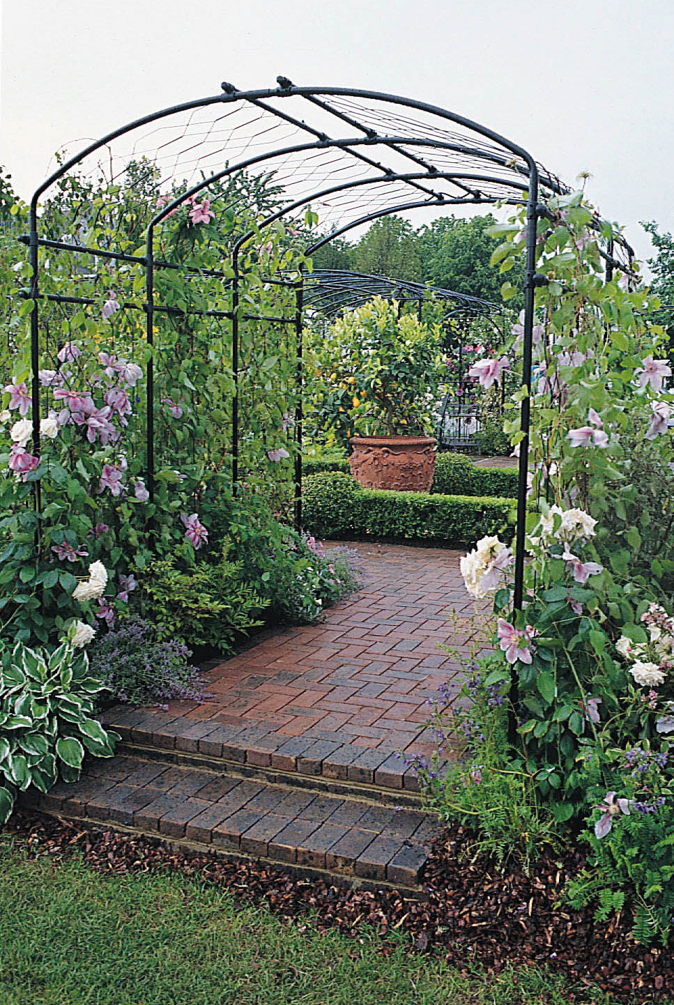 Agriframes Steel Pergolas 4 To 10 Widths Available 4
