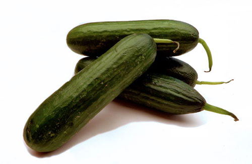 All About Cucumbers