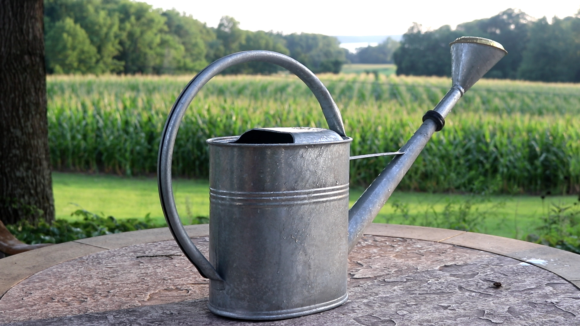 Large Galvanized Watering Can 2 3 Gallon Garden Artisans