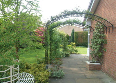 Choosing Plants for your Garden Arch