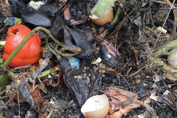 Composting - Go Green