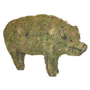 Mossed Pig Topiary Frame