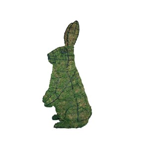 Mossed Standing Rabbit Topiary Frame