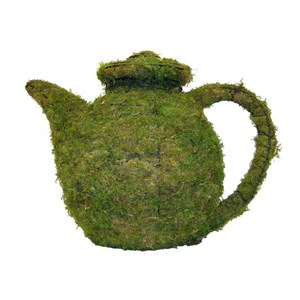 Mossed Teapot Topiary Frame