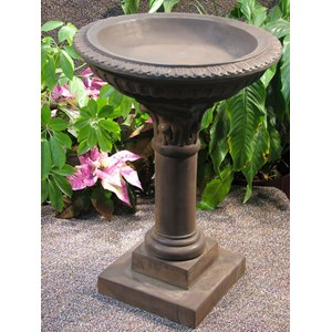 Regency Birdbath in Dark Walnut