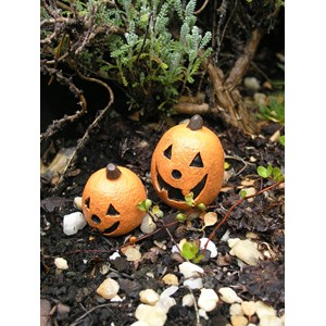 Mini Jack-O-Lanterns Set of 2