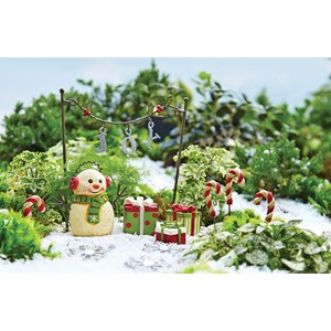 Joyful Life Miniature Garden Kit