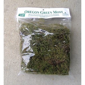 Oregon Green Moss in Bag