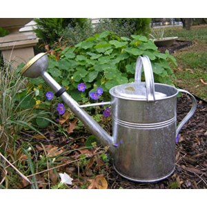 European Classic Double Grip Watering Can - Plain