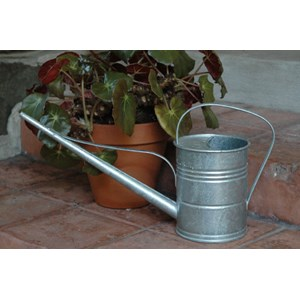 Long Reach Galvanized Watering Can
