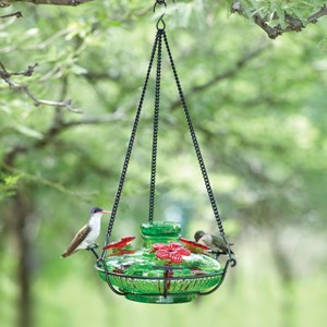 Bloom Perch Hummingbird Feeder - Green