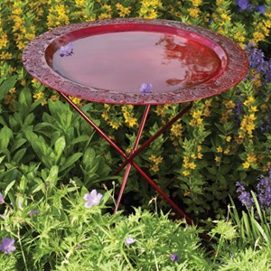Red Ivy Bird Bath