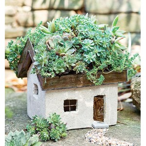 Tabby Cottage with Living Roof