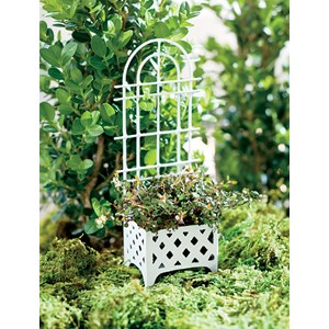 Miniature White Planter with Trellis