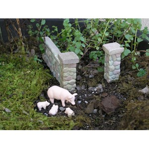 Mini Pigs and Stone Wall