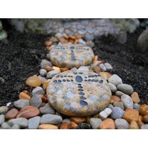 Miniature Dragonfly Stepping Stones