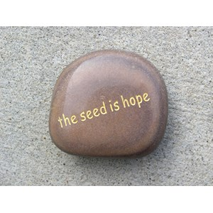 The seed is hope word stone