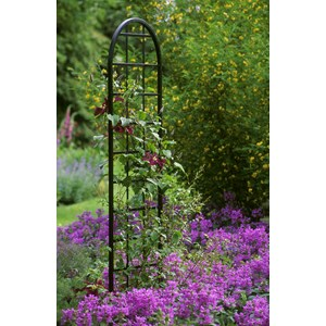 Burlington stand alone Wall Trellis