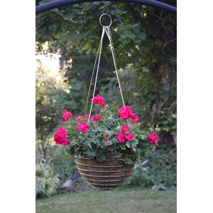 Stainless Steel Hanging Basket