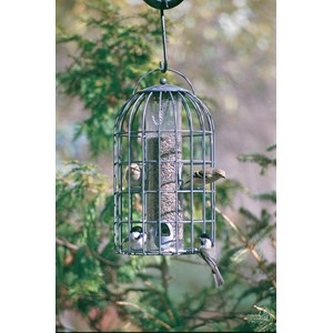 Nuttery NT22 Bird Feeder