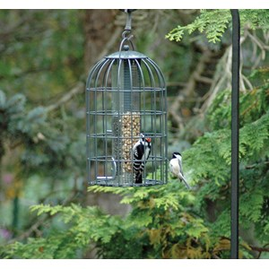 Nuttery NT27 Bird Feeder