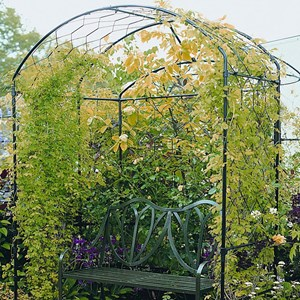 Harrogate Bower - Steel Garden Bower
