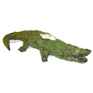 Mossed Alligator Topiary Frame