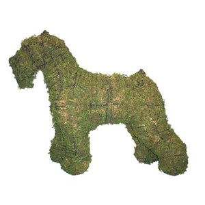 Mossed Schnauzer Topiary Frame