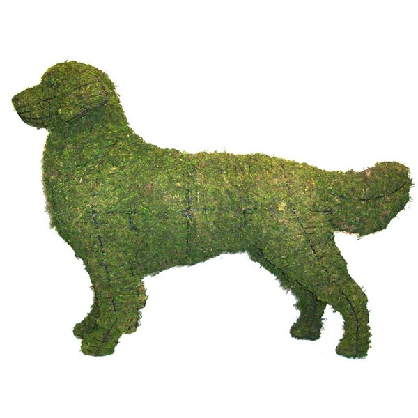 Mossed Golden Retriever Topiary Frame