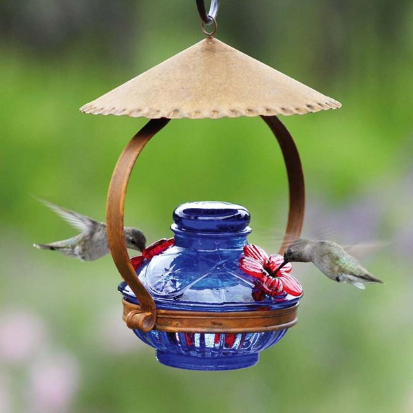Hummingbird Feeder with Shelter