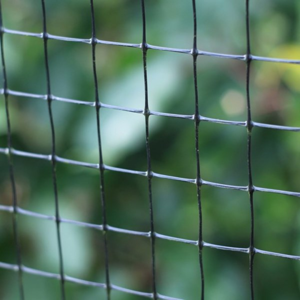 Fruit Cage Side Netting