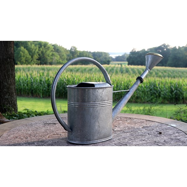 European Classic Large Oval Watering Can - Plain