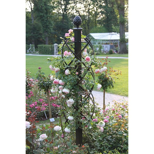 Charleston Rose Pillar   Classic Garden Elements