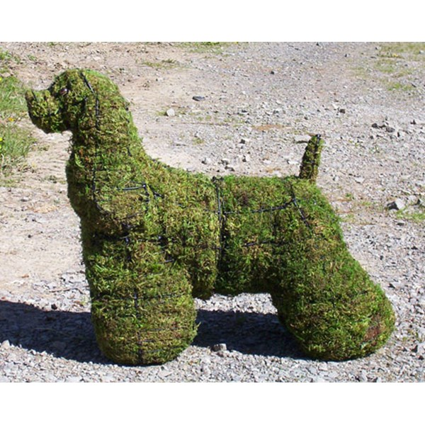 Mossed Cocker Spaniel Topiary Frame