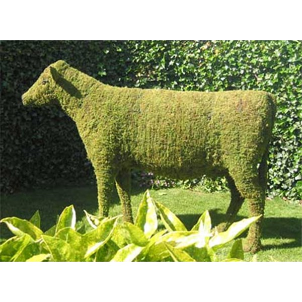 Mossed Cow Topiary Frame