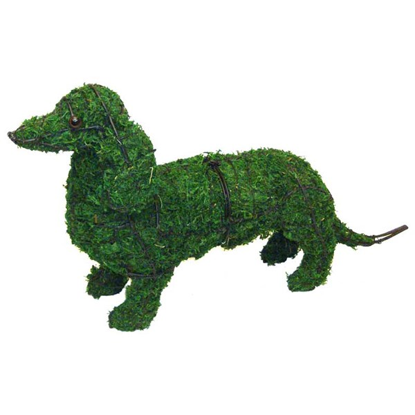 Mossed Dachshund Topiary Frame