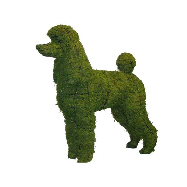 Mossed Poodle Topiary Frame